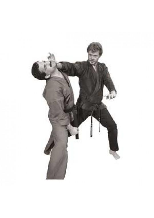 When Kenpo Strikes Series with Master Larry Tatum