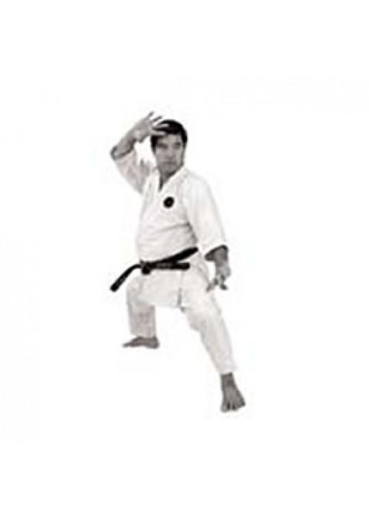 Okinawan Goju Ryu