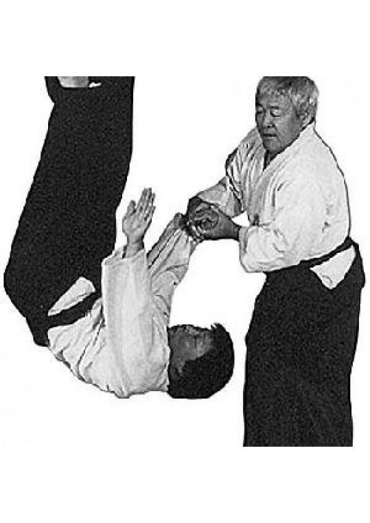 Mastering Aikido with Japanese Master Ken Ota