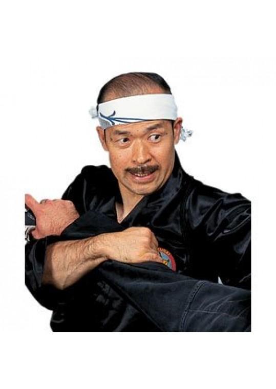 Grandmaster Shoto Tanemura's Samurai Jujutsu Series